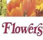 Sissons-Flowers-Gifts-Avon-Lake-Logo.jpg